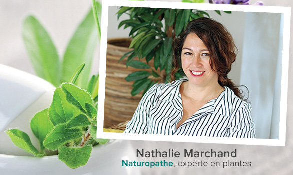 Nathalie Marchand, Naturopathe et experte en plantes pour BIOPUR